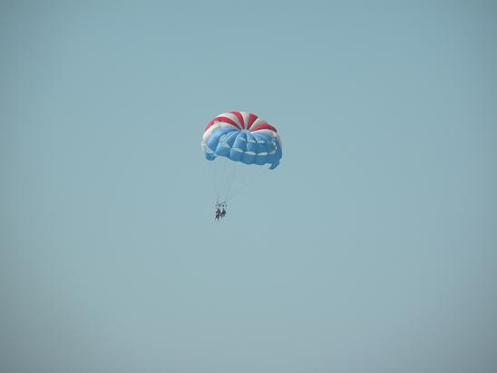 It must not have been too cold out there for this trooper to fly the friendly skies of Clearwater Beach.